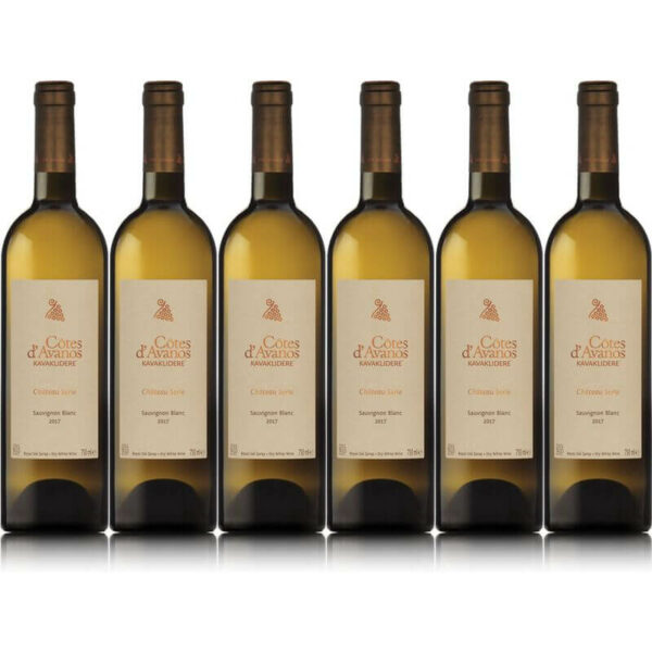 Sparpaket 6 x Cotes d'Avanos Sauvignon Blanc